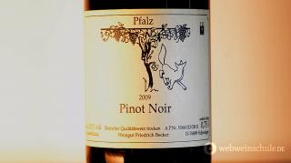 Pinot Noir Pfalz Becker
